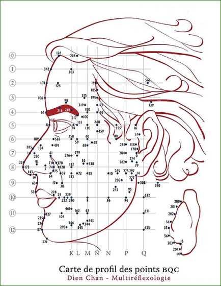 Rf041 points bqc profil